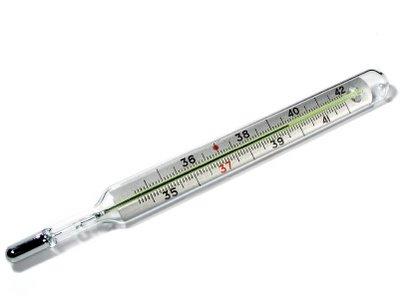 Termómetro De Mercurio En Vidrio